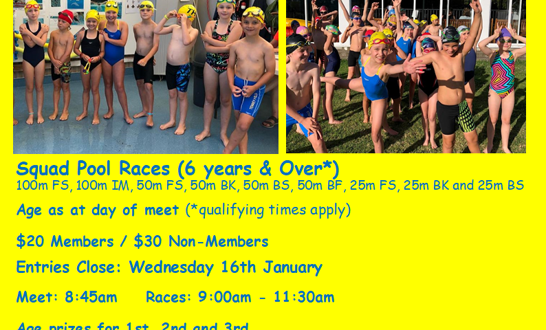 Terrey Hills Swim Club Carnival 18 January 2020 - image Web-carnival-794x480 on http://thswim.com.au
