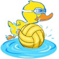Flippa Ball - image Flippa-ball on http://thswim.com.au